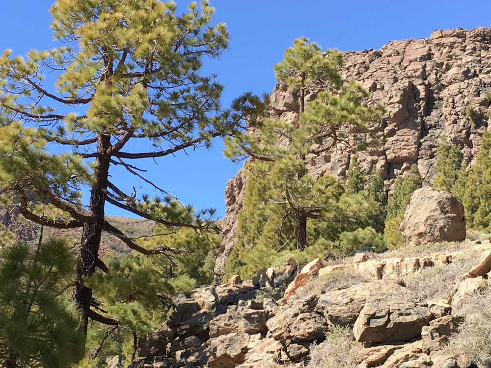 hiking path over rocks to the top