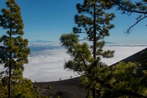 Ruta de los Volcanes - above the clouds with view to Tenerife