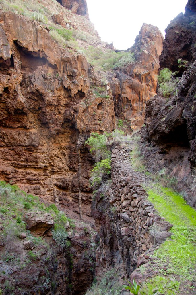Hiking path in the Barranco Natero