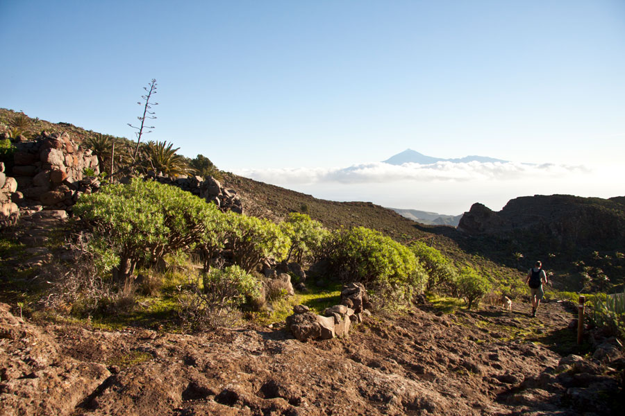 hiking path on the ridge with mount Teide in the background