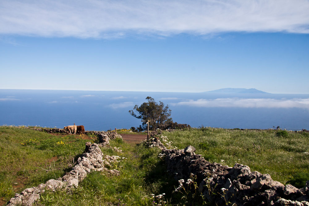 view to Tenerife from the plateau