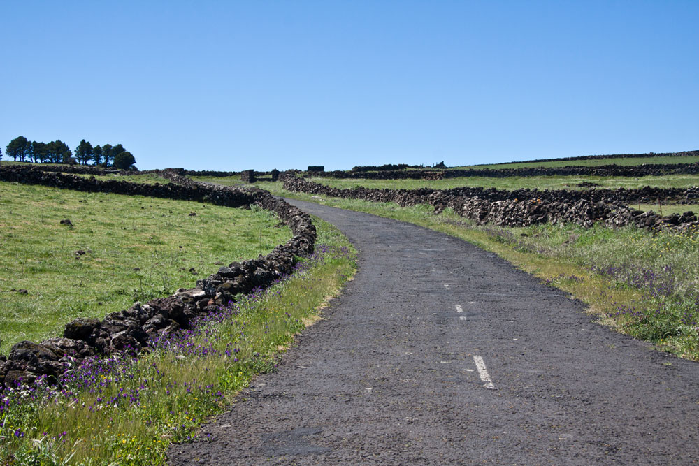 hiking path on lonely roads