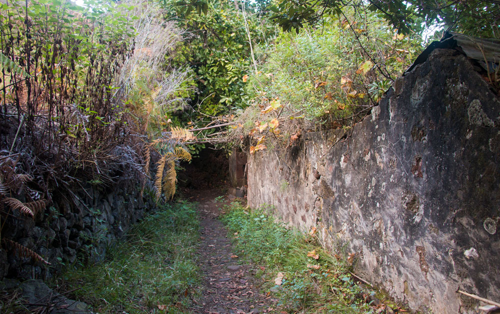 hiking path at the ruins of Cuevas Negras