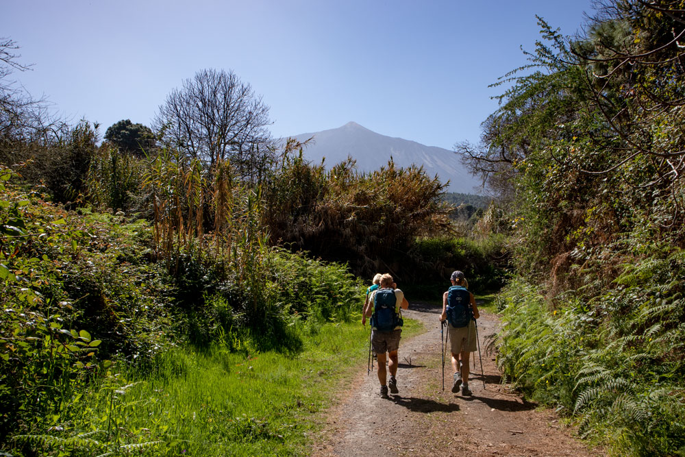 hiking path La Florida - in the background Mount Teide