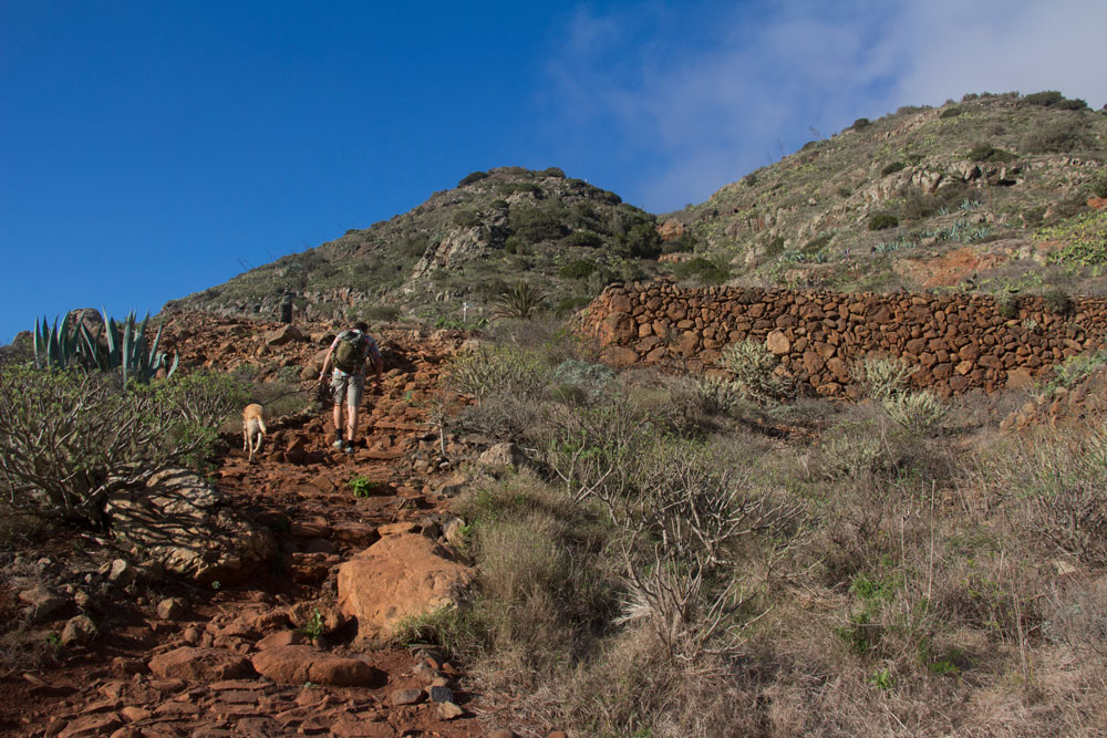 path between Mirador Agulo and Mirador Abrante