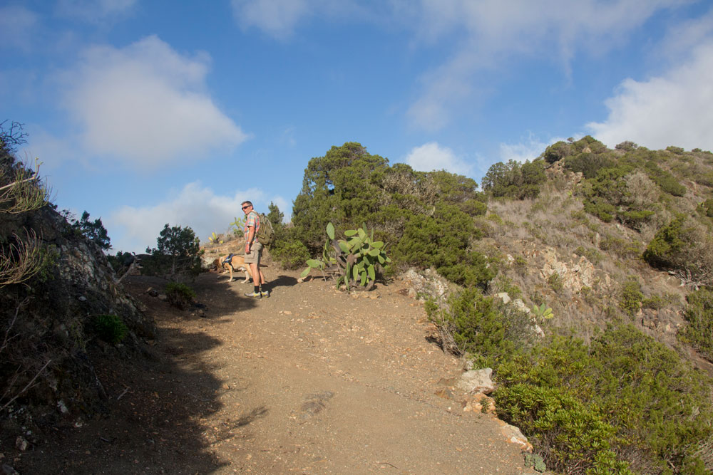 on the comb hight - hiker with dog - Vallehermoso