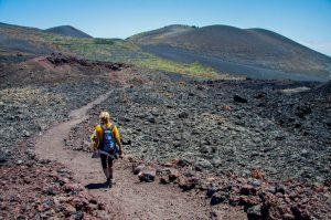 hiker on a hiking path - La Palma - fellow hikers