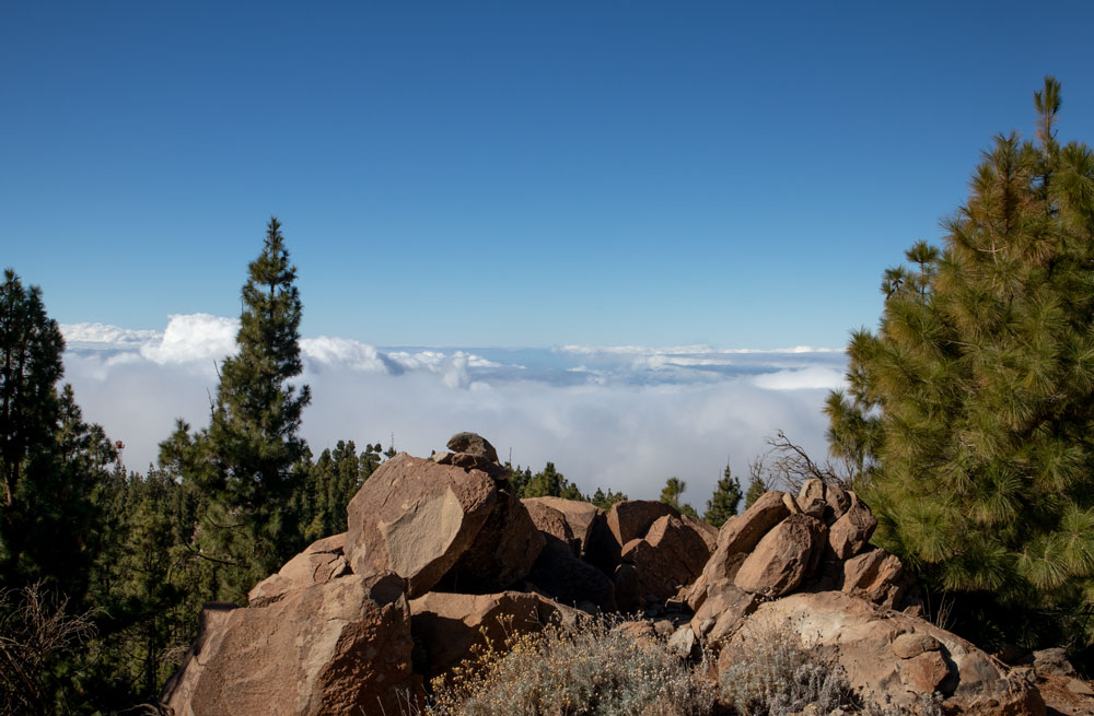 hiking over the clouds - Montaña el Cedro