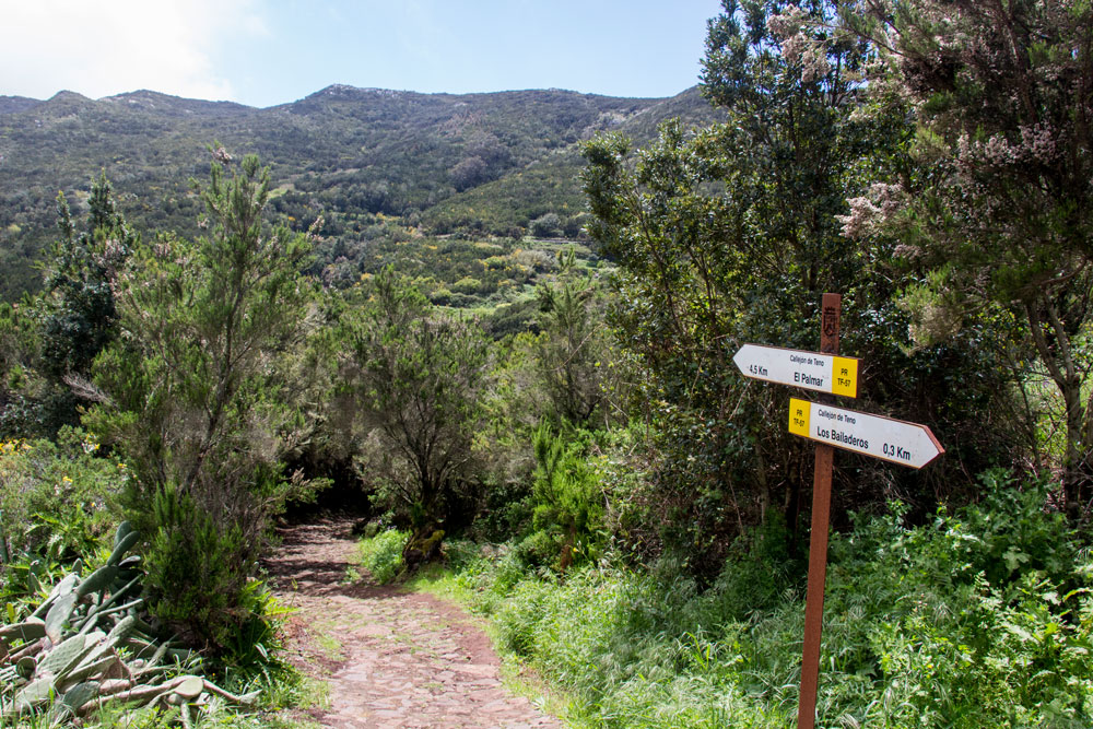 hiking path between Teno Alto and Las Portelas