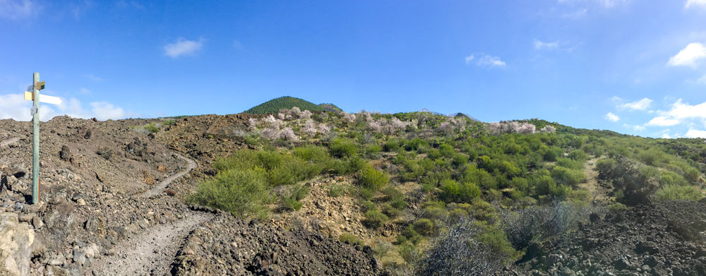 Panorama Almond blossom hike and volcano stones