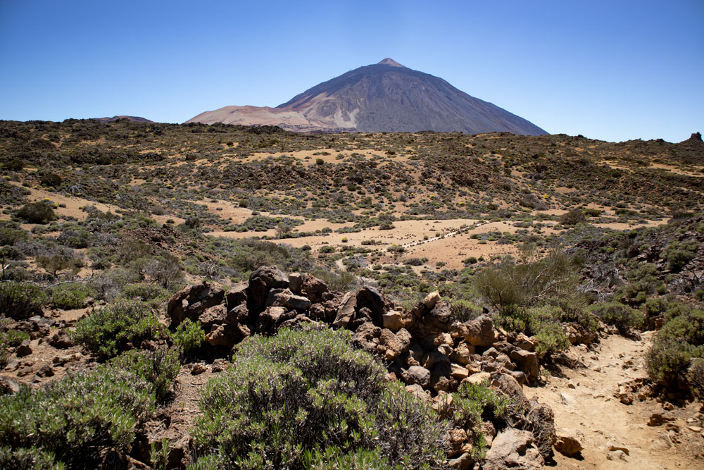 hiking trail towards Teide and Montaña Blanca from El Portillo