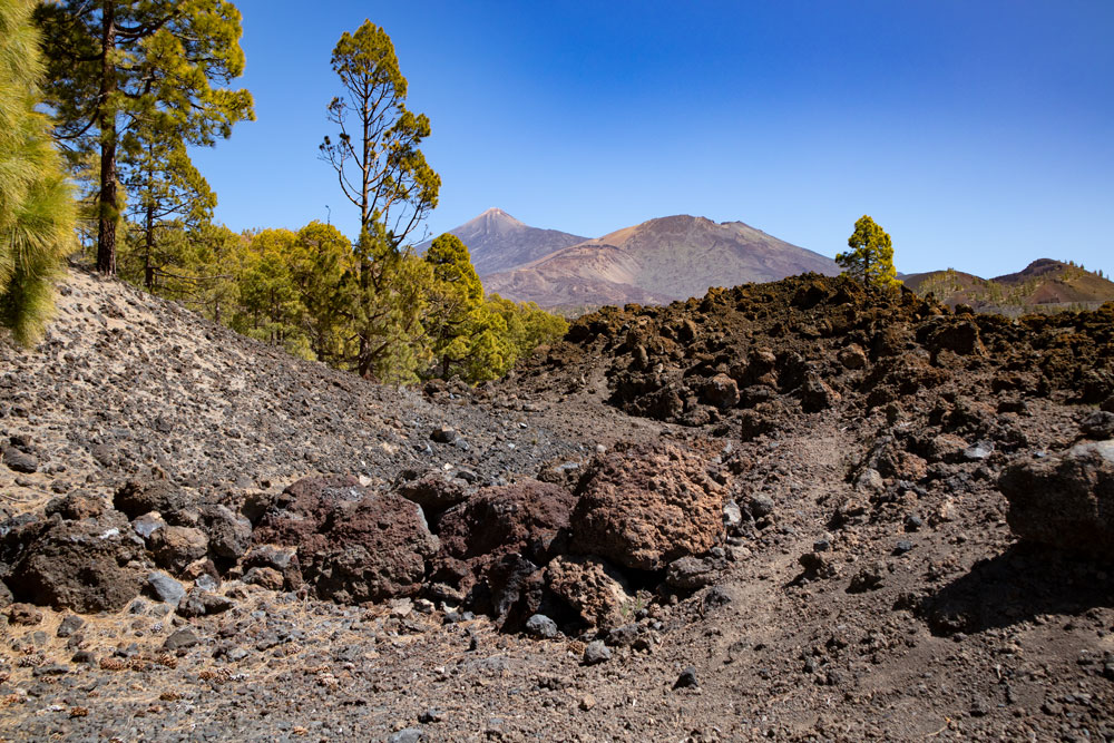 View on the Teide and Pico Viejo