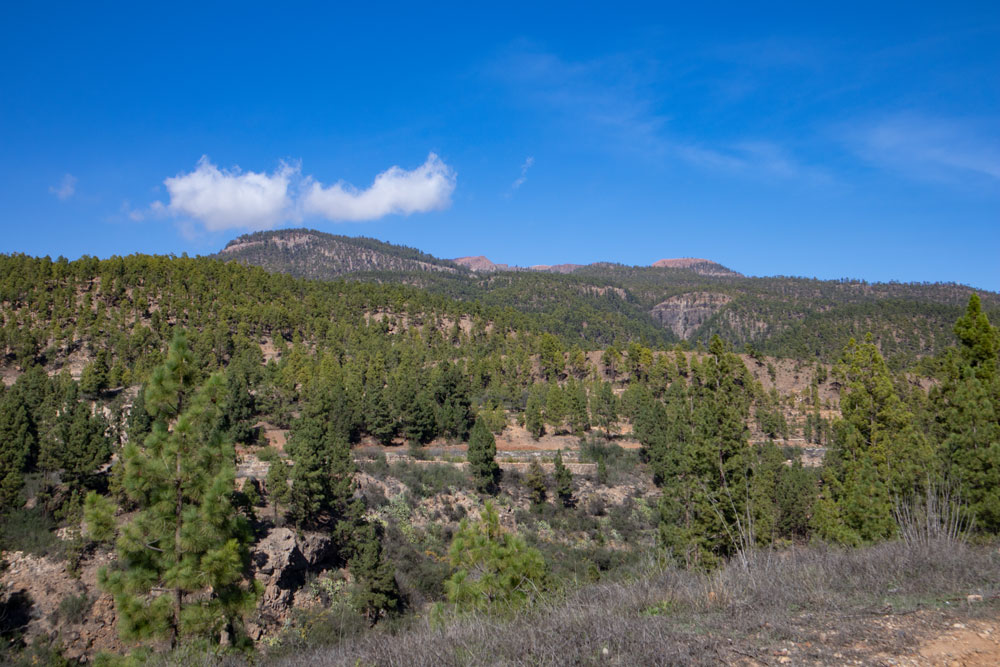 View in direction Cañadas from the hiking trail