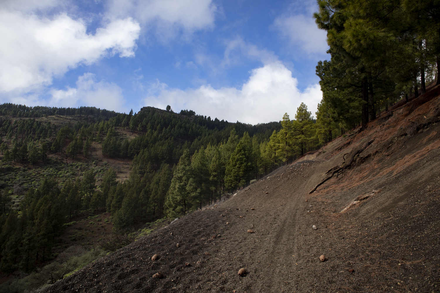 Hiking trail on the slopes of the Caldera de los Marteles