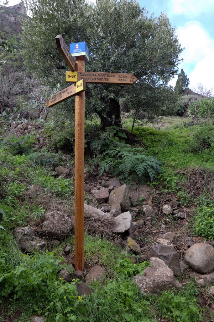Hiking crossroads in the Barranco de Guayadeque - Cruce del Olivio