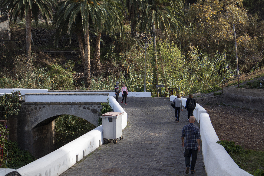 Bridge over the Barranco in Taganana