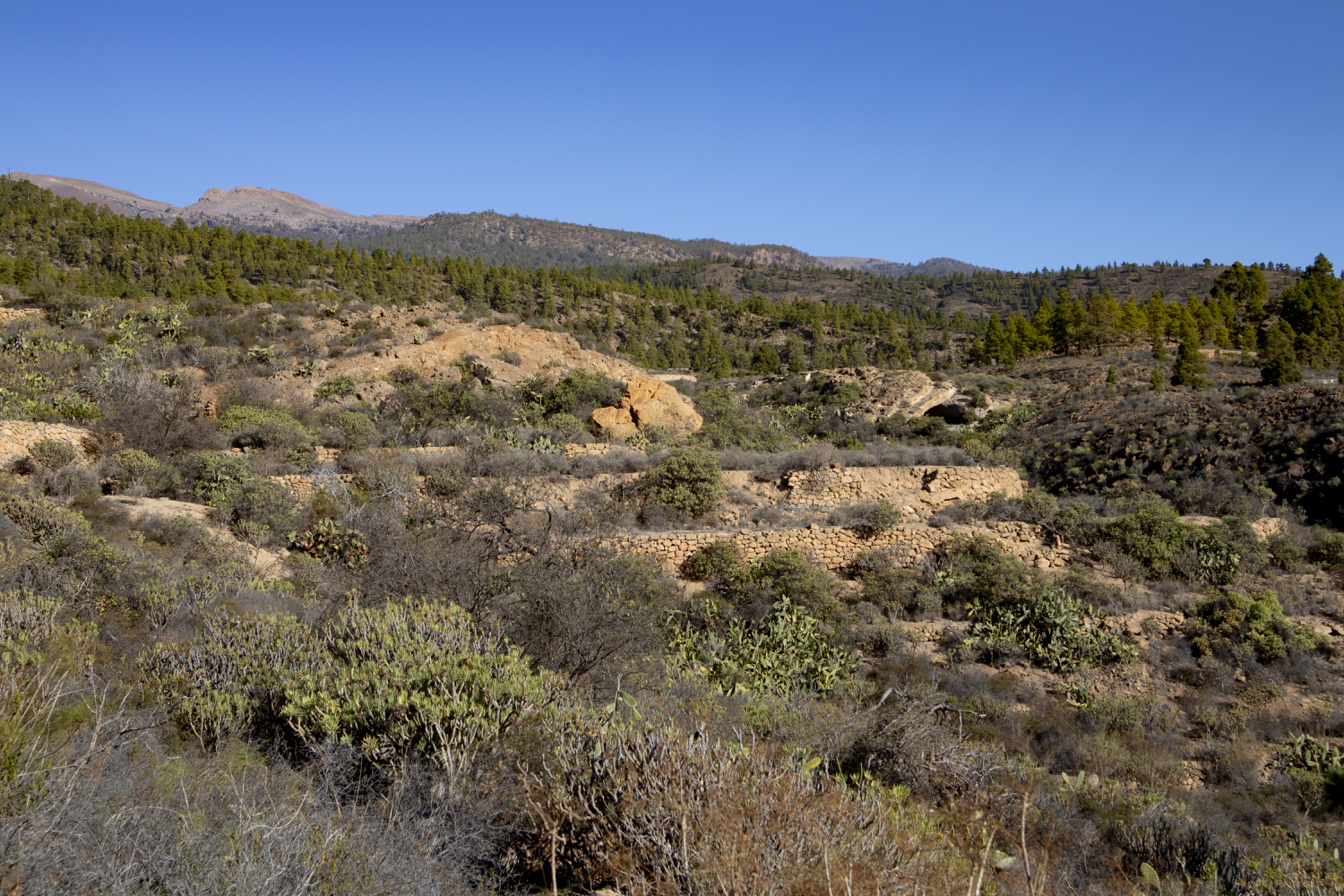 the landscape in the east of the island is dominated by white rock