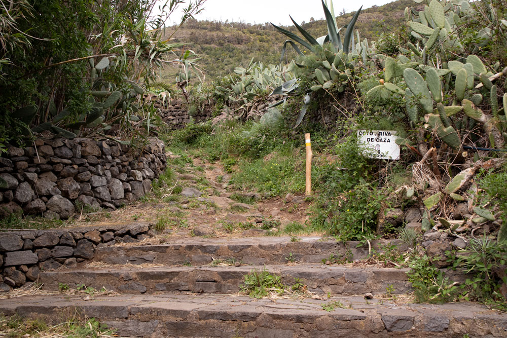 Entry hiking trail to the Mesa de Tejina