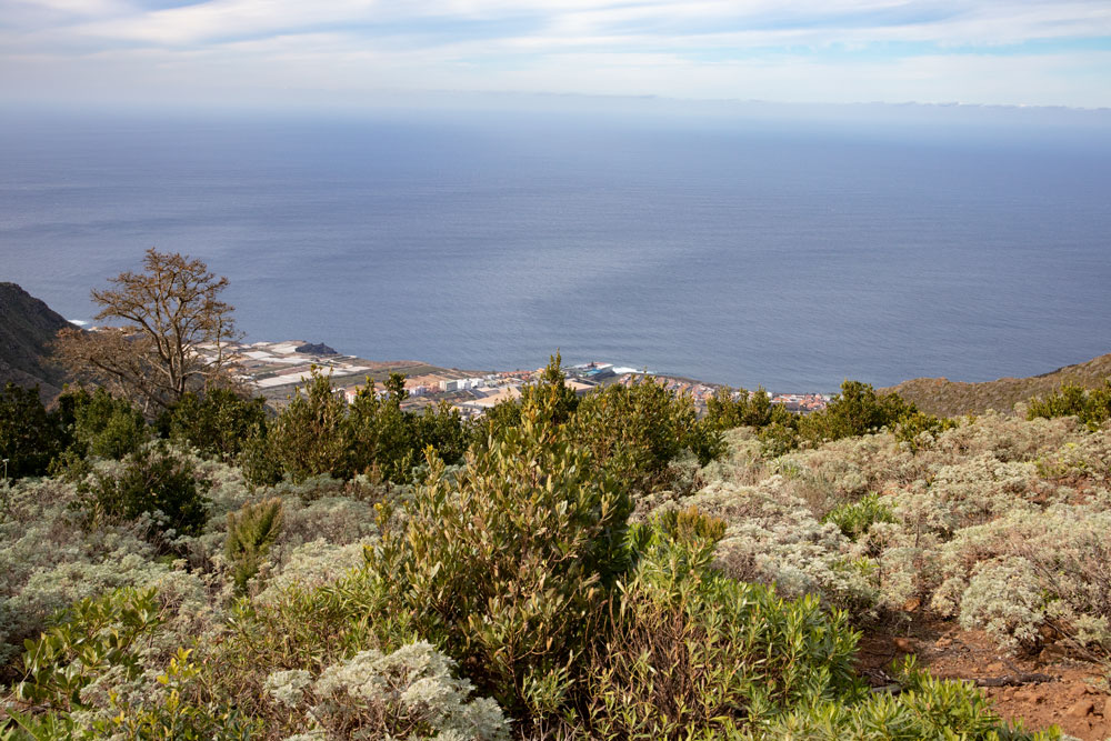 View from the Mesa de Tejina to the coast