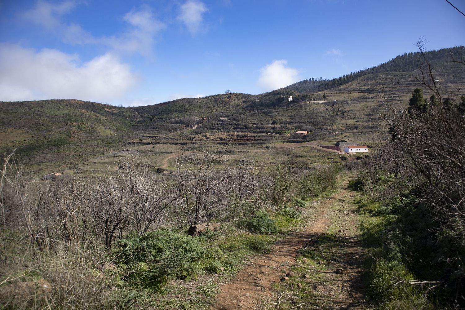 Hiking trail past terraced fields