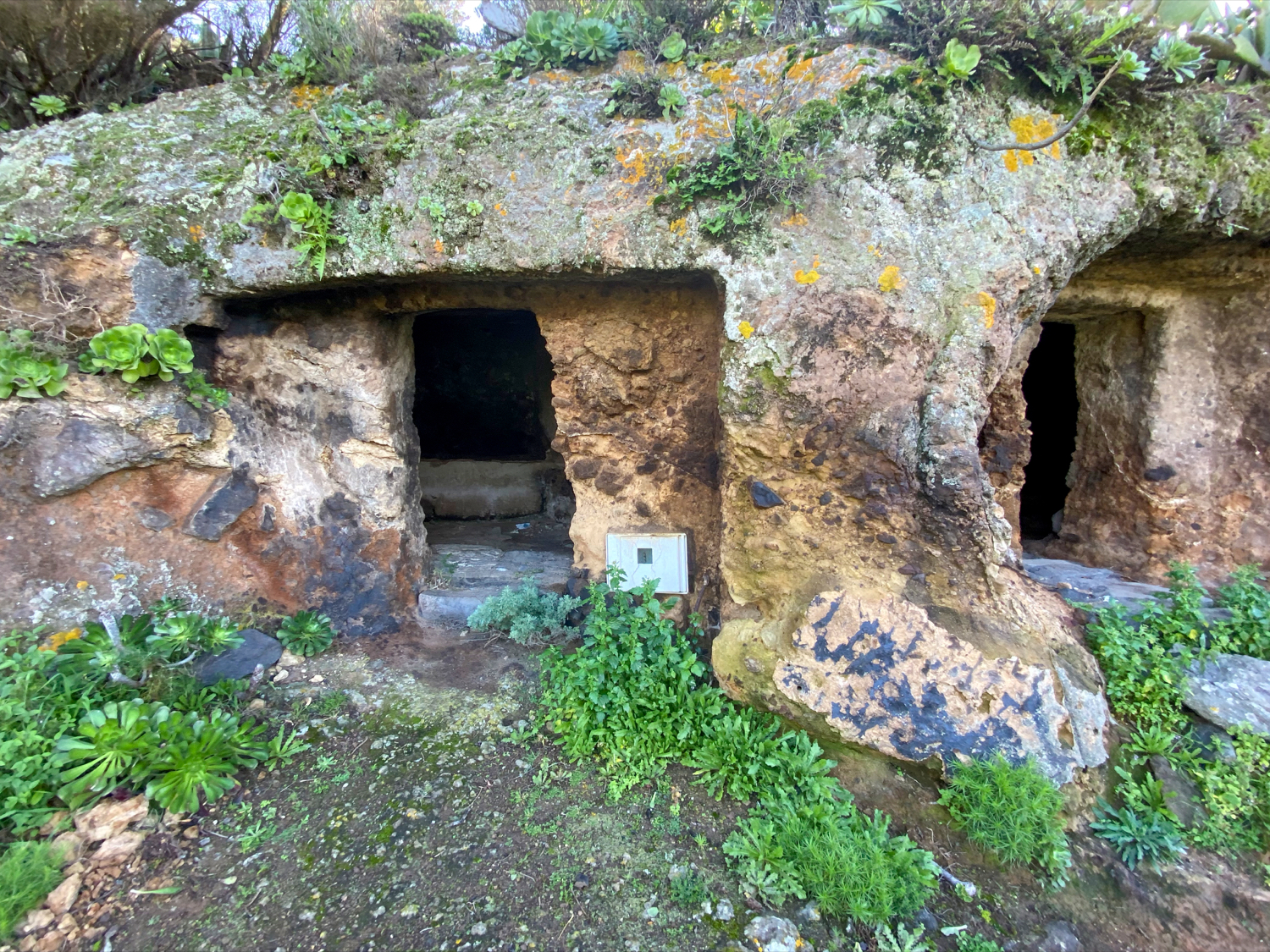 Cave stables at the Los Berros homestead