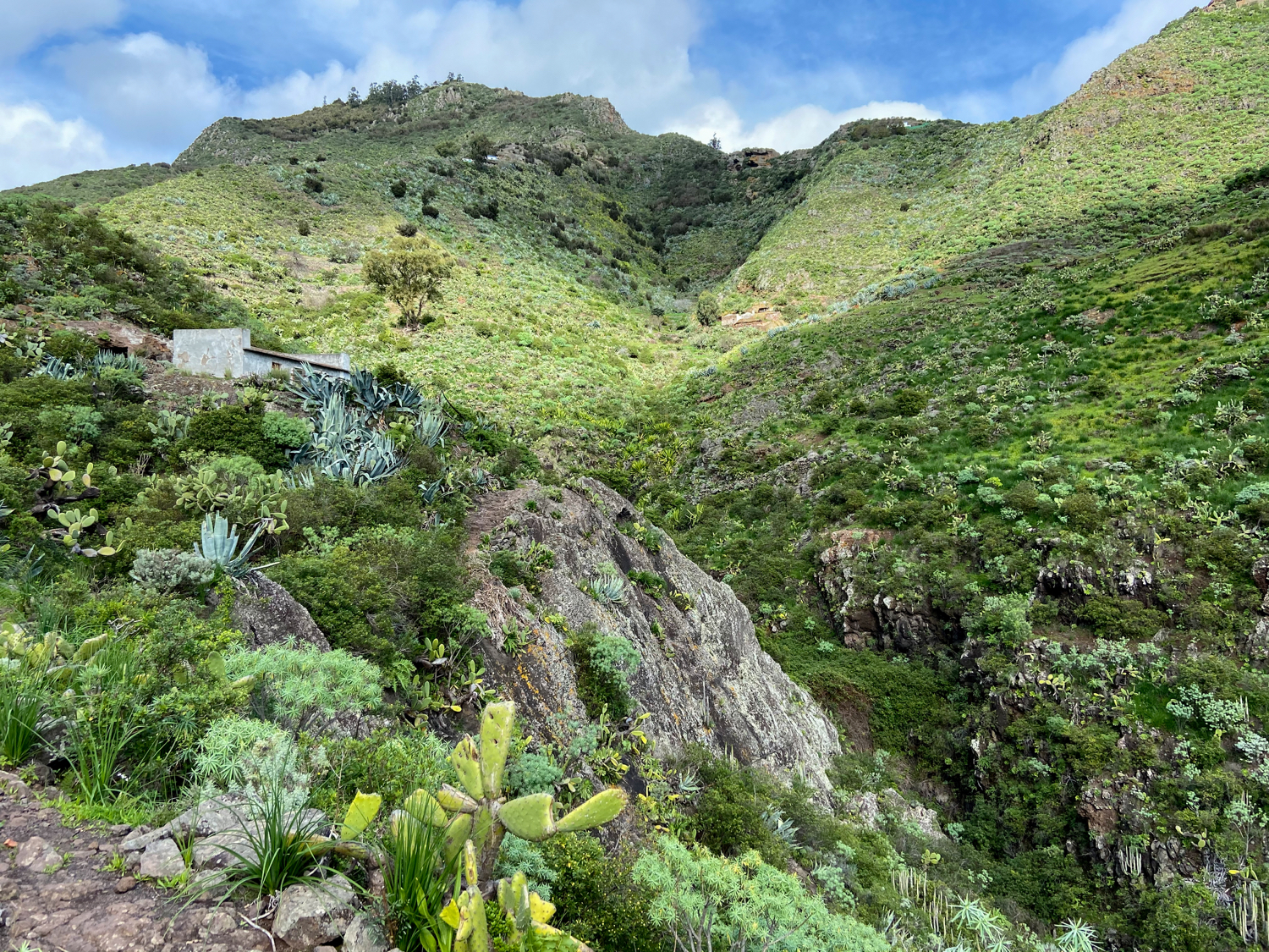 Hiking trail uphill in the Barranco de Valle Luis