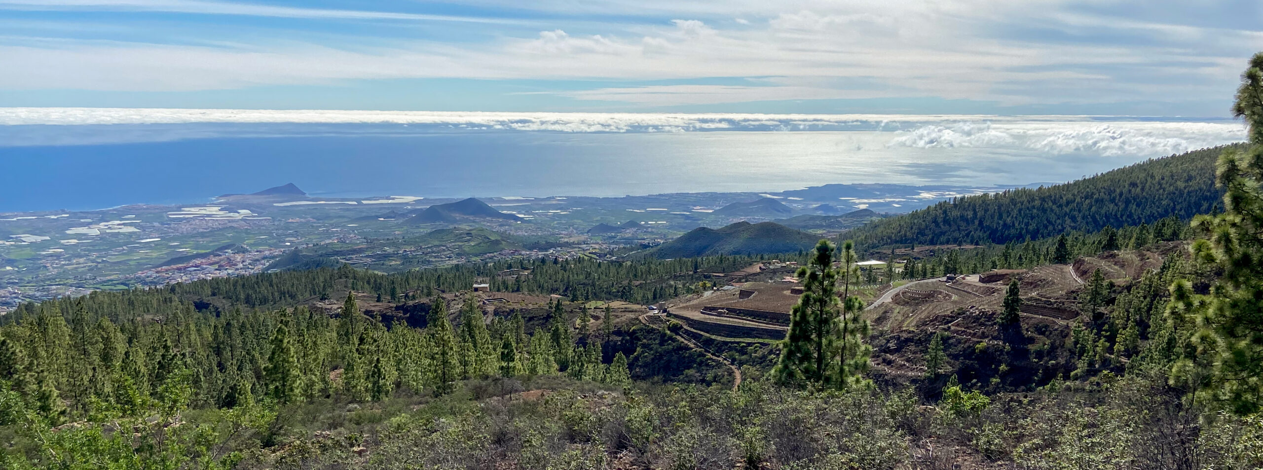 View over terraced fields to the east coast of Tenerife