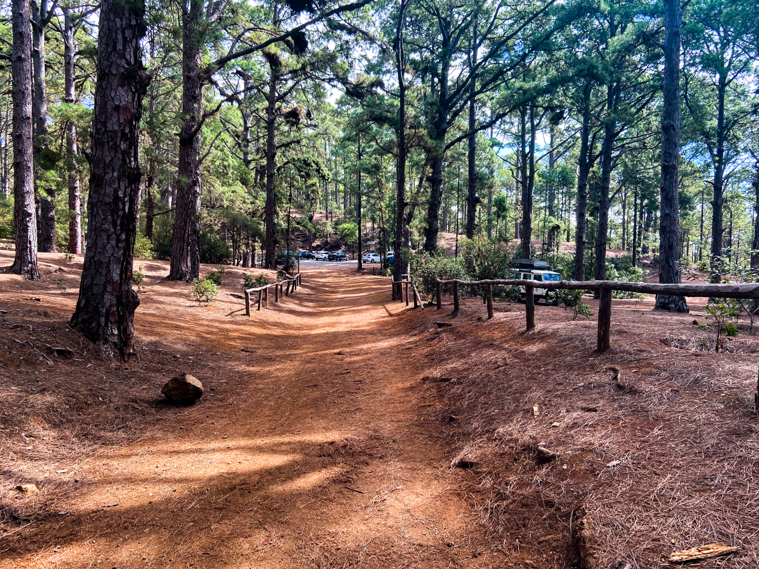 Hiking trail to the Las Raíces rest area