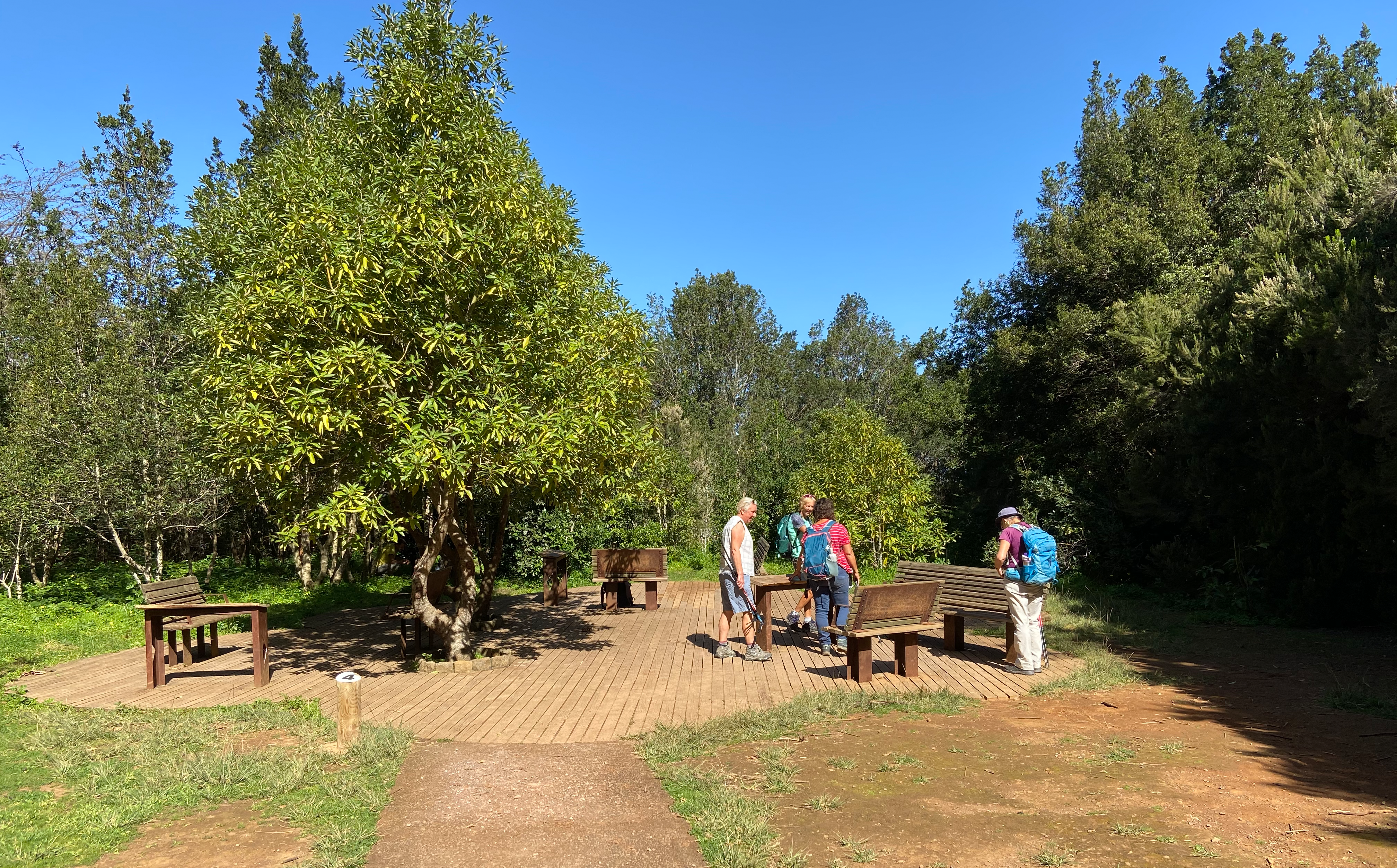 Small rest area on the hiking trail