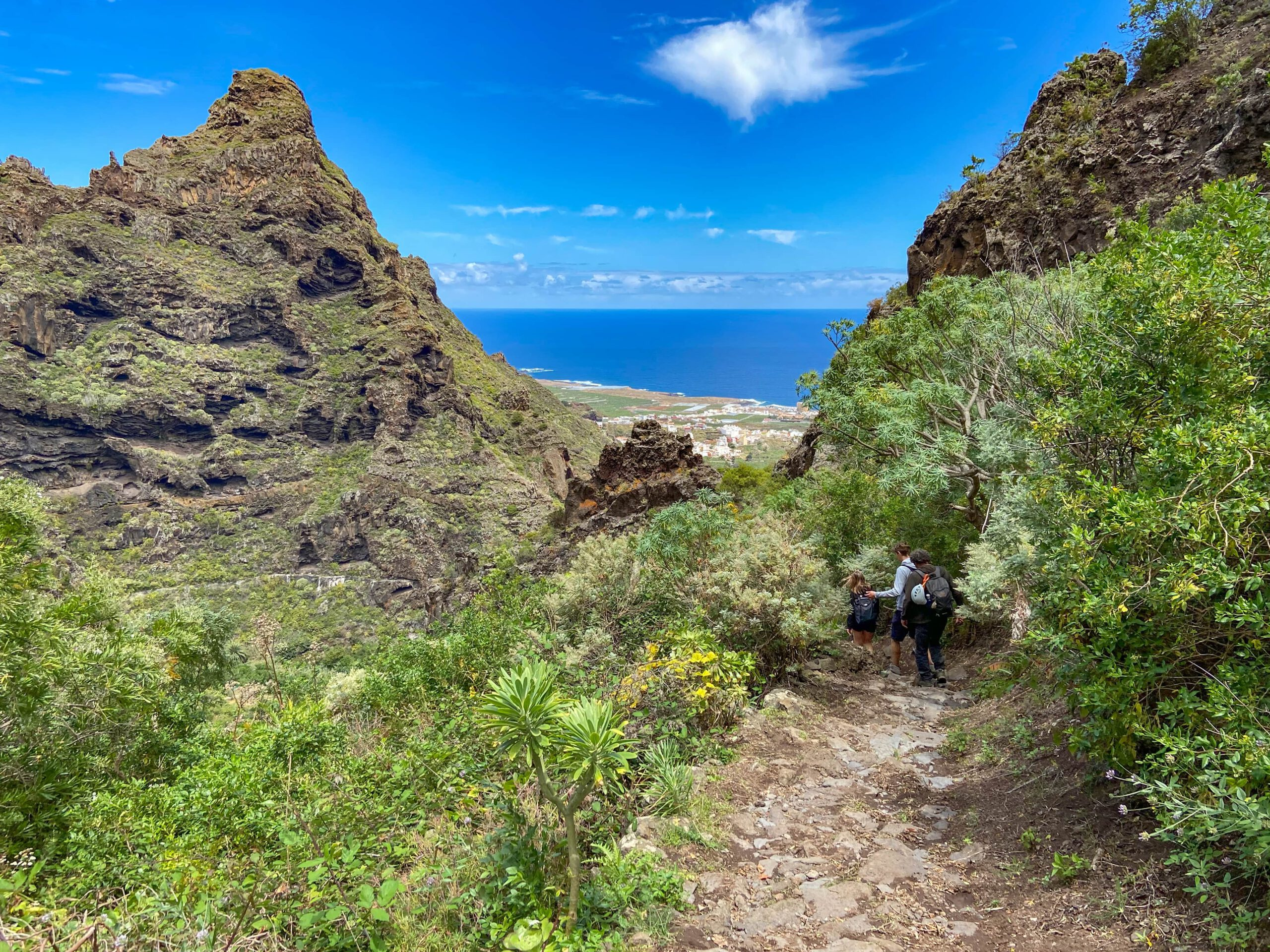Hiking trail PR TF 53 from Erjos to Los Silos via Cuevas Negras with view of the coast at Los Silos