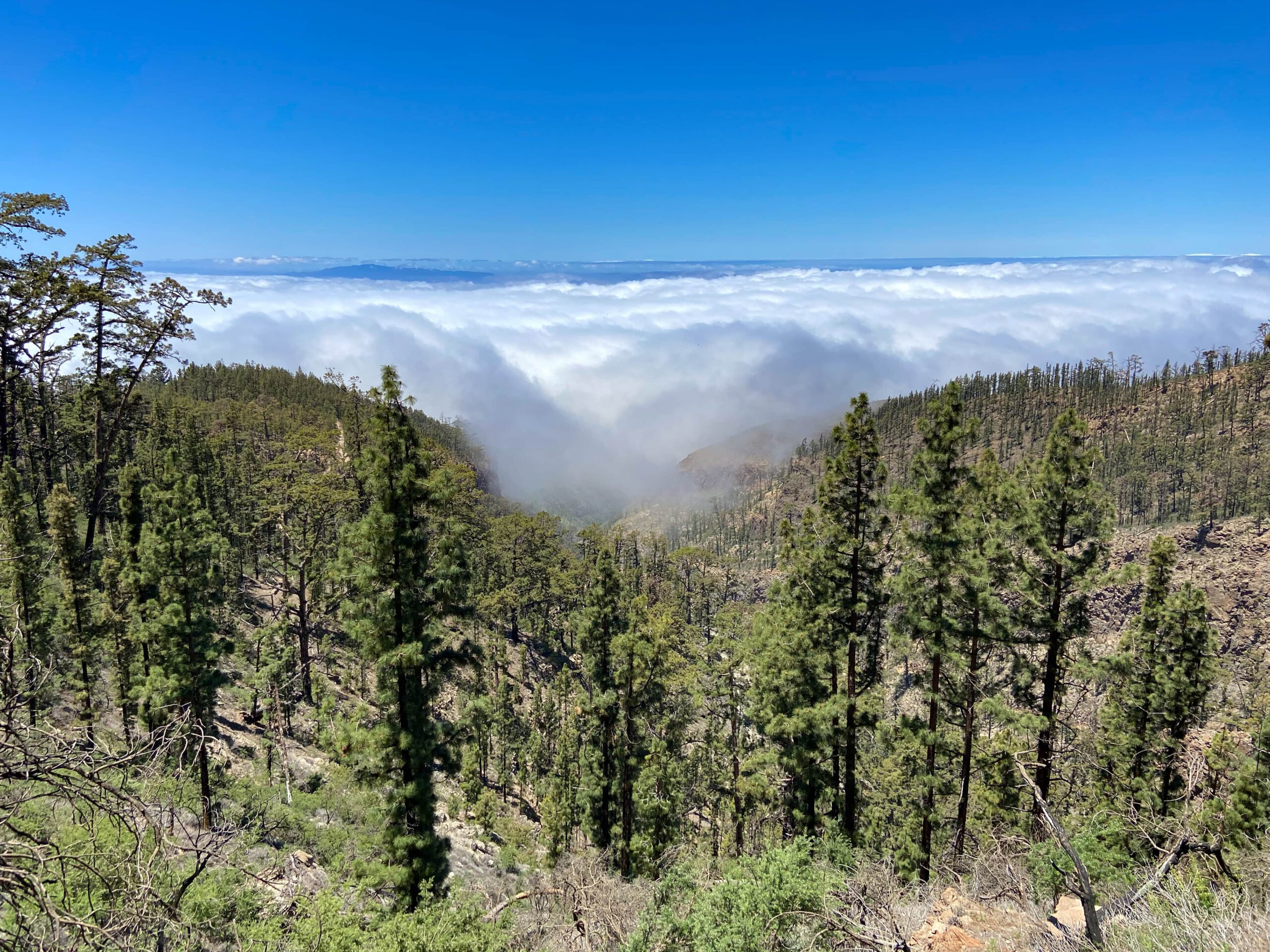 View from above the clouds to the neighbouring islands of La Gomera and La Palma