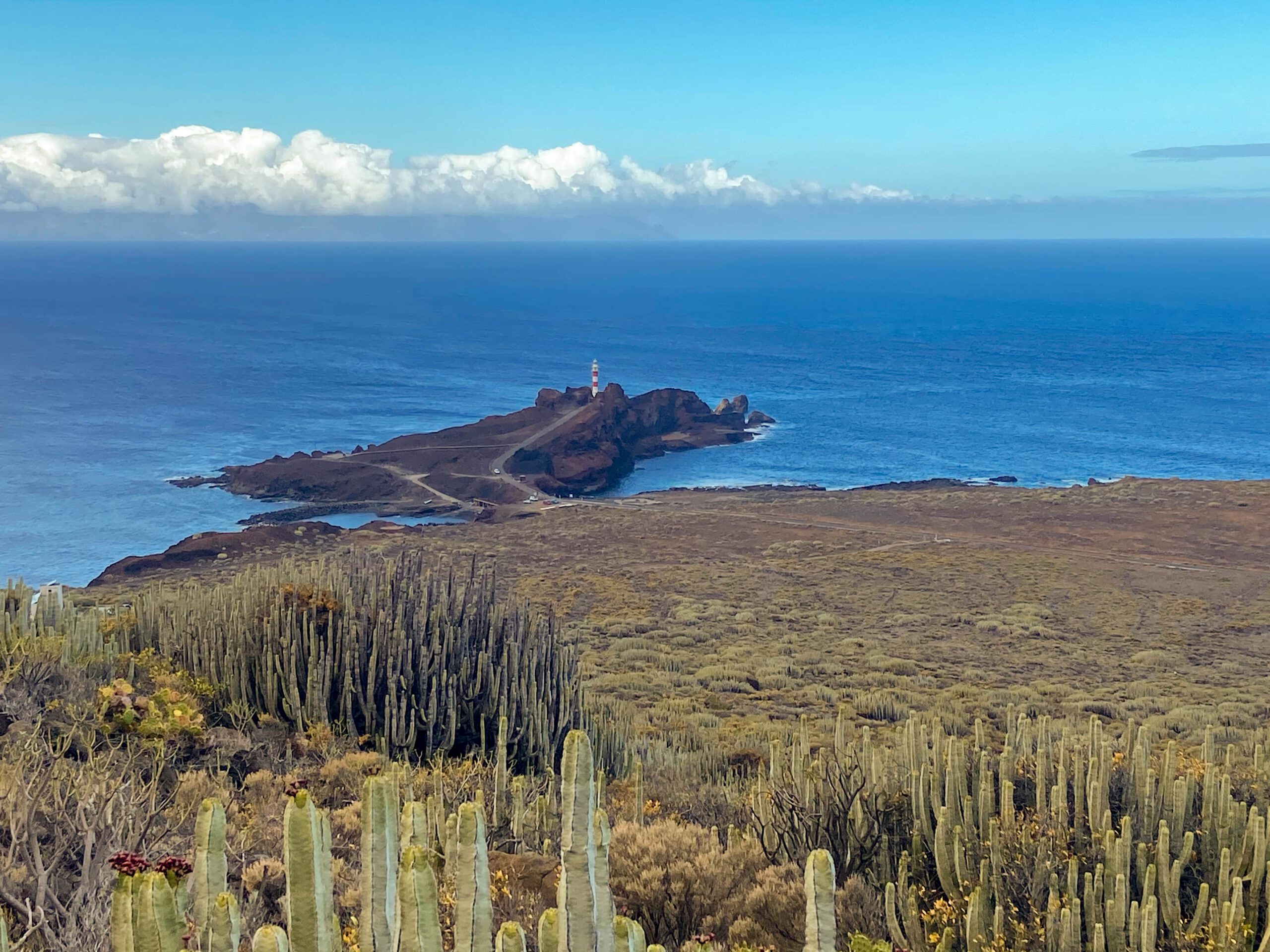 View of Punta Teno from the hiking trail